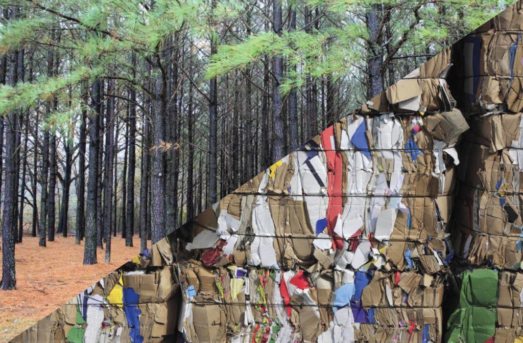 Waste Forest